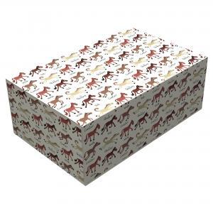 Ponies Storage Box